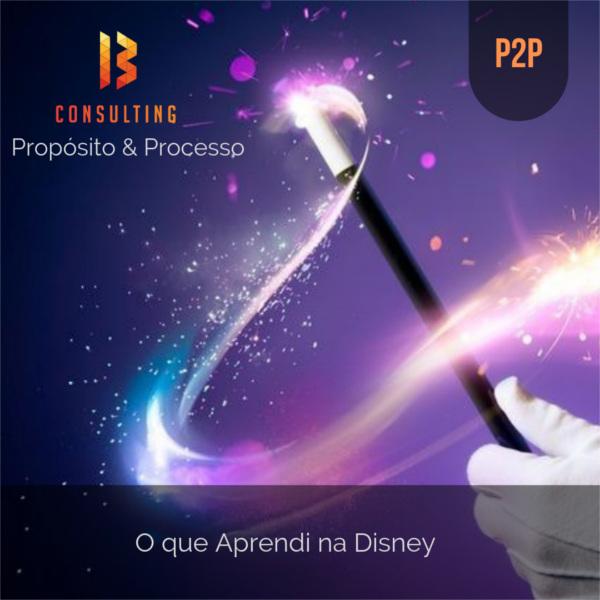 img Programa de Capacitação P2P - Propósito & Processo